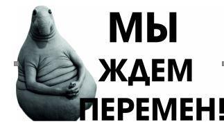 Российское общество между застоем и стремлением к переменам. Доклад ЦИПКР по итогам всероссийского опроса общественного мнения